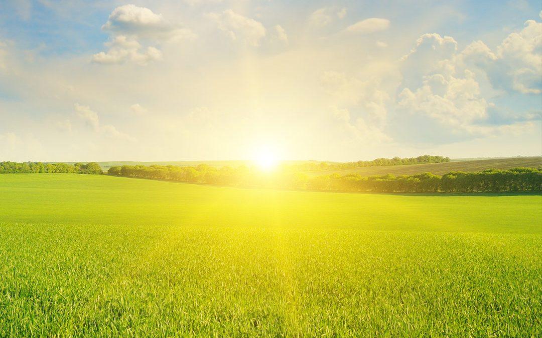 Healing Benefits of the Sun