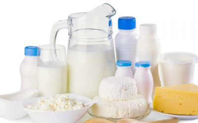 The Issues Surrounding Dairy